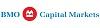 BMO Capital Markets Job Application
